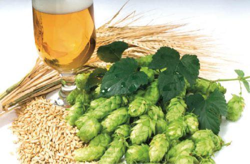 Безалкогольное пиво при грудном вскармливании - Всё об алкоголизме