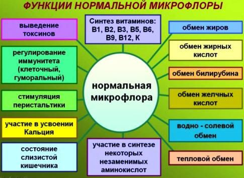 Нормальная микрофлора