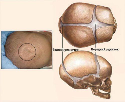 Роднички у грудничка