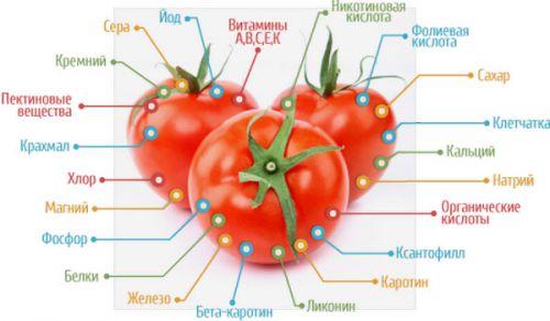 Питательная ценность помидоров