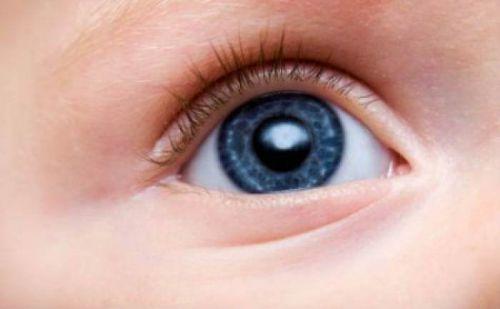 Глаз младенца