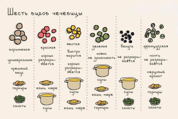 Таблица видов чечевицы и блюд из них