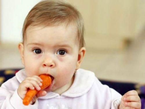 Ребенок грызет морковку