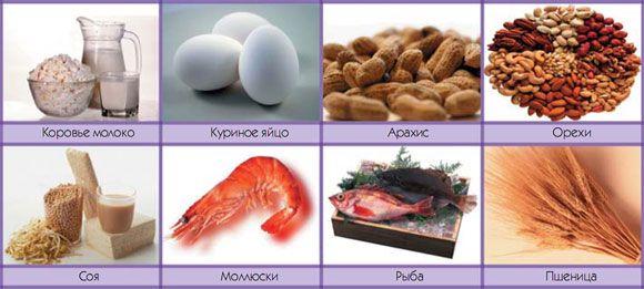 Продукты - сильные аллергены