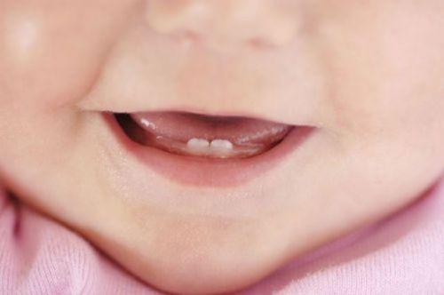 Первые зубы у младенца
