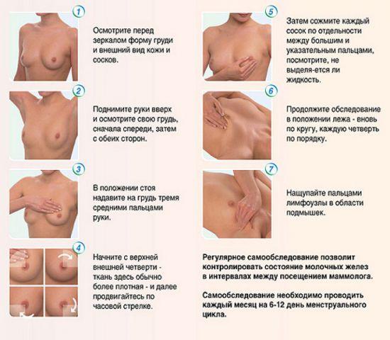 Порядок осмотра груди