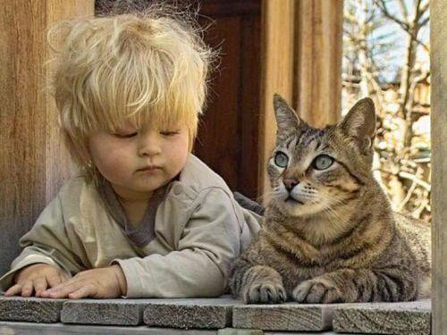 Ребенок с кошкой