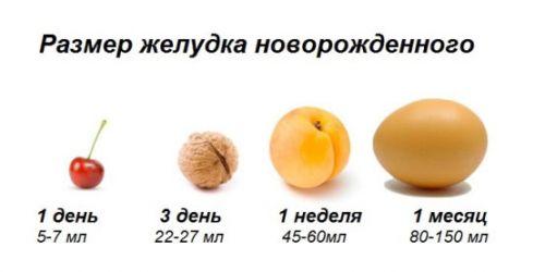 Изменение размера желудка новорожденного